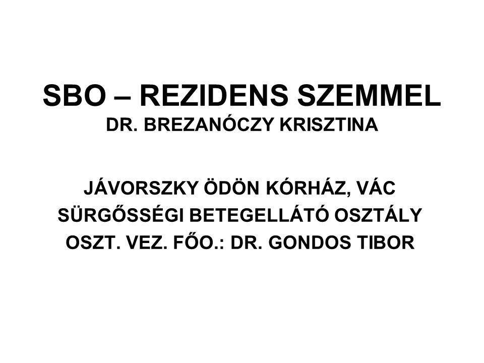 SBO – REZIDENS SZEMMEL DR. BREZANÓCZY KRISZTINA JÁVORSZKY ÖDÖN KÓRHÁZ, VÁC SÜRGŐSSÉGI BETEGELLÁTÓ OSZTÁLY OSZT. VEZ. FŐO.: DR. GONDOS TIBOR
