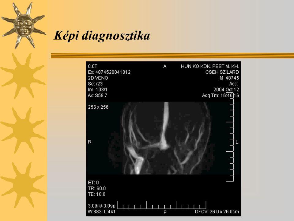 Képi diagnosztika