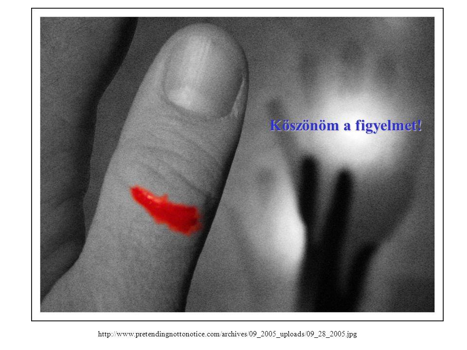 http://www.pretendingnottonotice.com/archives/09_2005_uploads/09_28_2005.jpg Köszönöm a figyelmet!