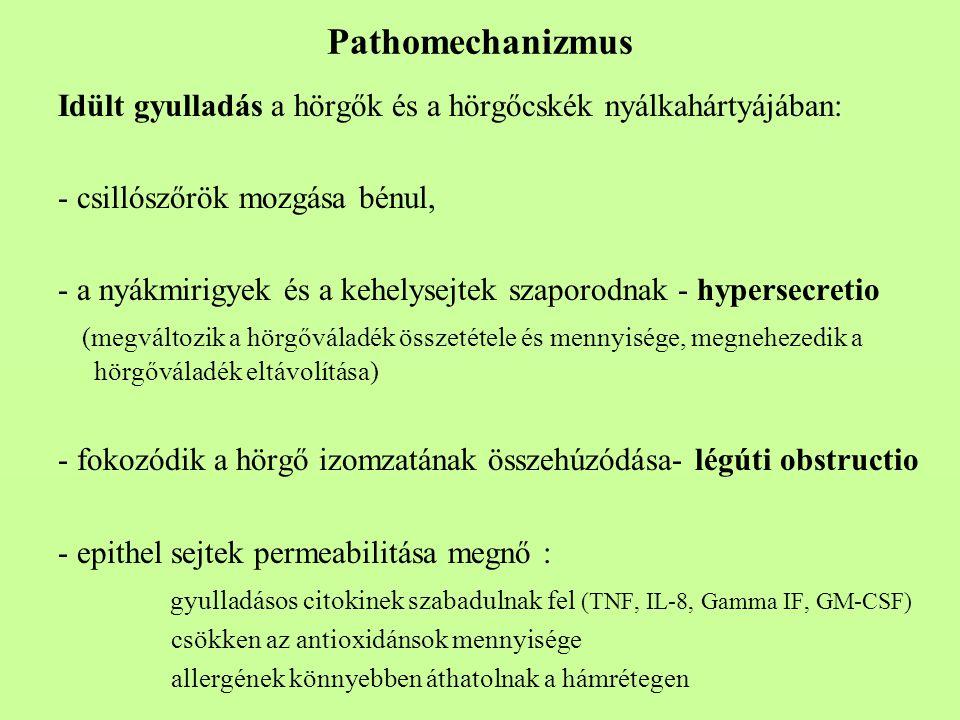 Pathomechanizmus Idült gyulladás a hörgők és a hörgőcskék nyálkahártyájában: - csillószőrök mozgása bénul, - a nyákmirigyek és a kehelysejtek szaporod