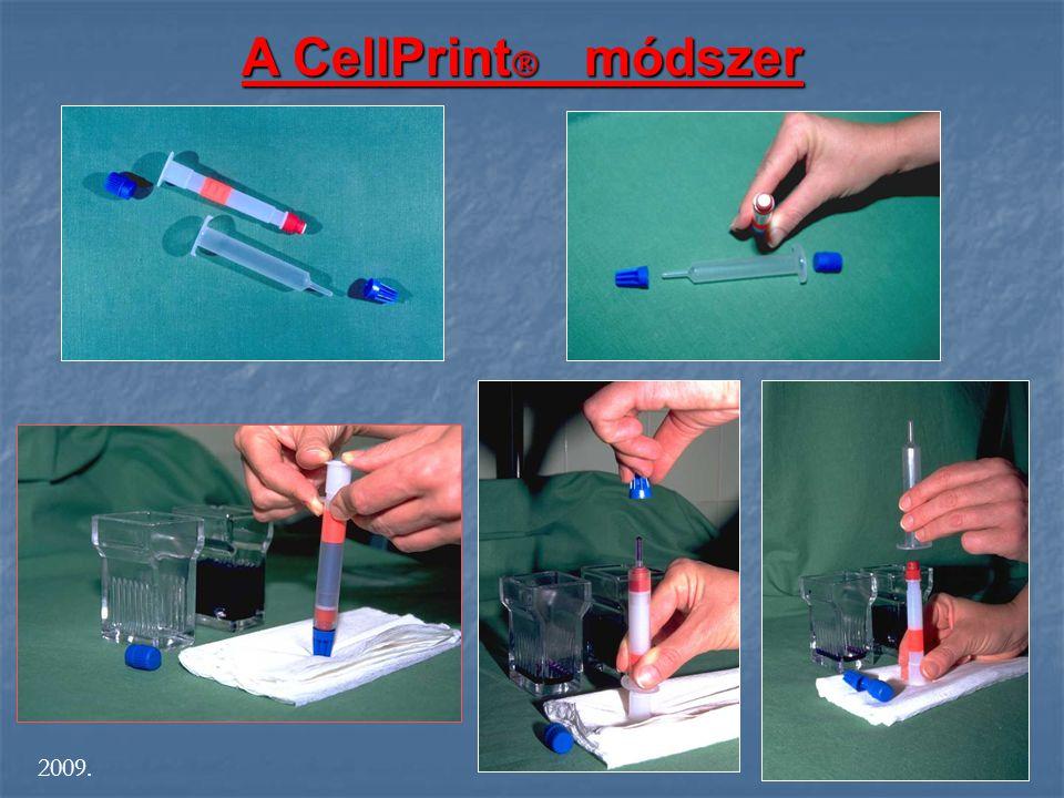 A CellPrint  módszer S 2009.