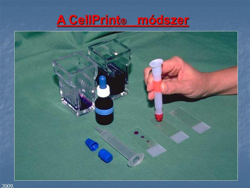 A CellPrint  módszer 2009.