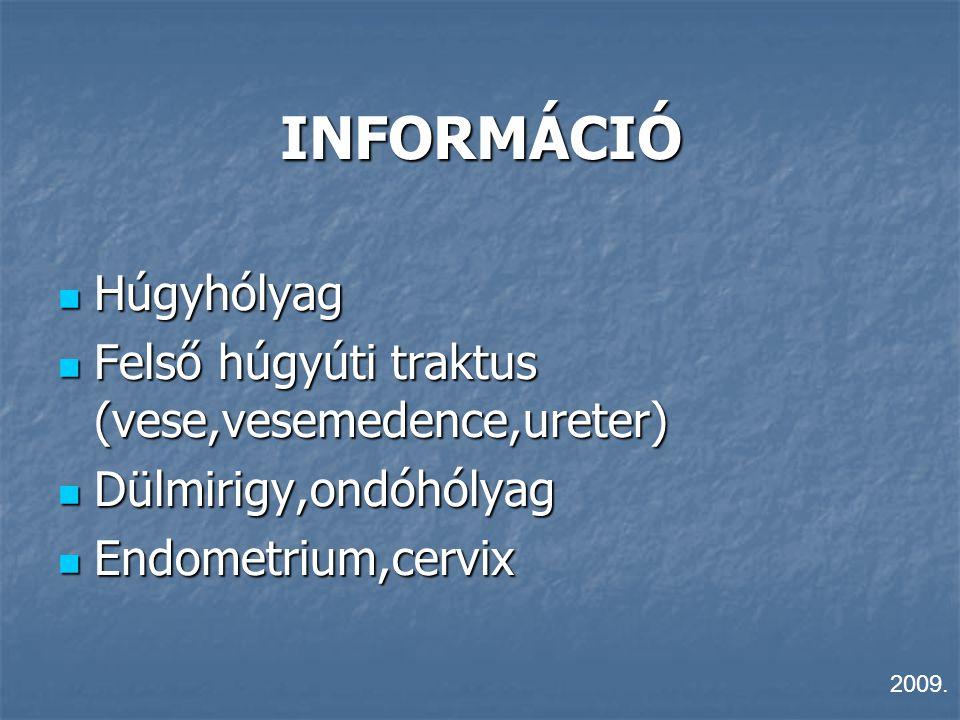 INFORMÁCIÓ Húgyhólyag Húgyhólyag Felső húgyúti traktus (vese,vesemedence,ureter) Felső húgyúti traktus (vese,vesemedence,ureter) Dülmirigy,ondóhólyag
