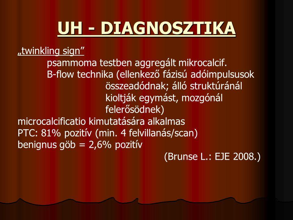 """UH - DIAGNOSZTIKA """"twinkling sign"""" psammoma testben aggregált mikrocalcif. B-flow technika (ellenkező fázisú adóimpulsusok összeadódnak; álló struktúr"""