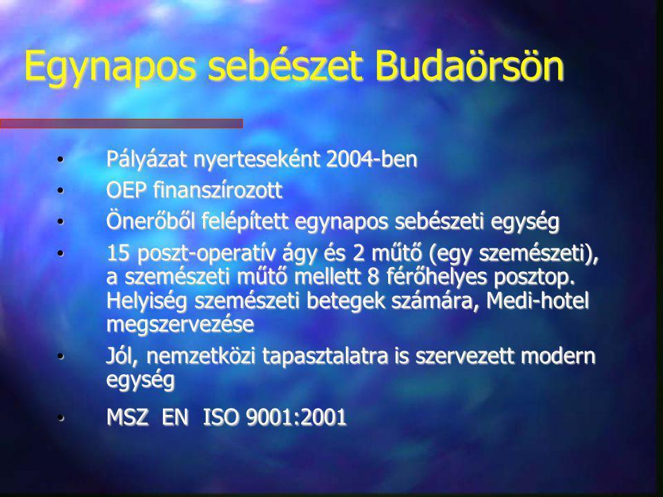 Egynapos sebészet Budaörsön Pályázat nyerteseként 2004-ben Pályázat nyerteseként 2004-ben OEP finanszírozott OEP finanszírozott Önerőből felépített eg