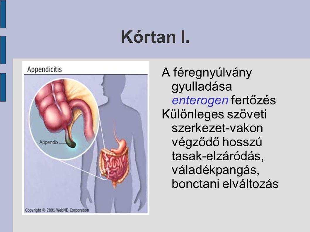 Kórtan I. A féregnyúlvány gyulladása enterogen fertőzés Különleges szöveti szerkezet-vakon végződő hosszú tasak-elzáródás, váladékpangás, bonctani elv