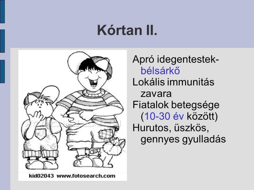 Kórtan II. Apró idegentestek- bélsárkő Lokális immunitás zavara Fiatalok betegsége (10-30 év között) Hurutos, üszkös, gennyes gyulladás