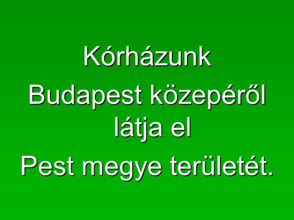 Kórházunk Budapest közepéről látja el Pest megye területét.
