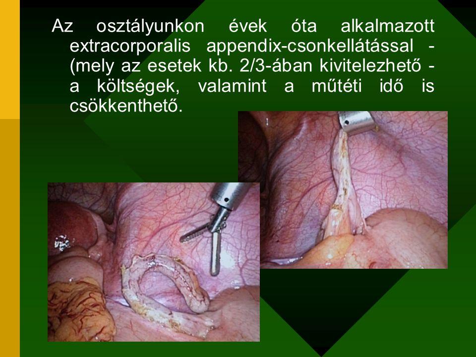 Az osztályunkon évek óta alkalmazott extracorporalis appendix-csonkellátással - (mely az esetek kb. 2/3-ában kivitelezhető - a költségek, valamint a m