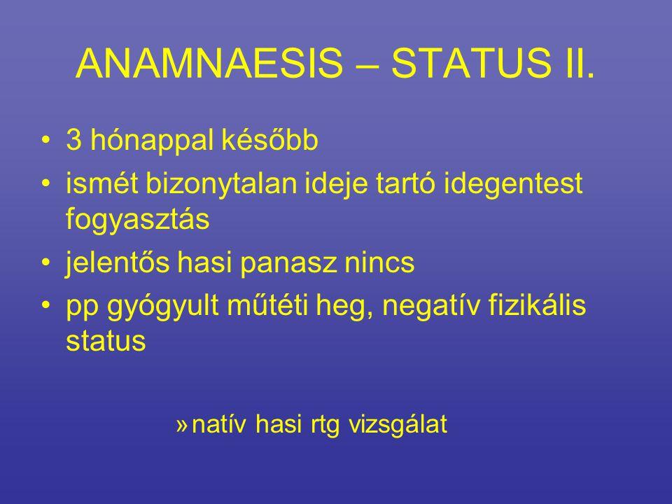 ANAMNAESIS – STATUS II.