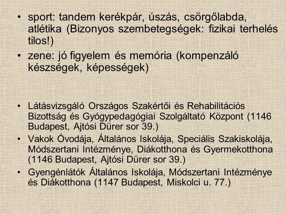 sport: tandem kerékpár, úszás, csörgőlabda, atlétika (Bizonyos szembetegségek: fizikai terhelés tilos!) zene: jó figyelem és memória (kompenzáló készségek, képességek) Látásvizsgáló Országos Szakértői és Rehabilitációs Bizottság és Gyógypedagógiai Szolgáltató Központ (1146 Budapest, Ajtósi Dürer sor 39.) Vakok Óvodája, Általános Iskolája, Speciális Szakiskolája, Módszertani Intézménye, Diákotthona és Gyermekotthona (1146 Budapest, Ajtósi Dürer sor 39.) Gyengénlátók Általános Iskolája, Módszertani Intézménye és Diákotthona (1147 Budapest, Miskolci u.