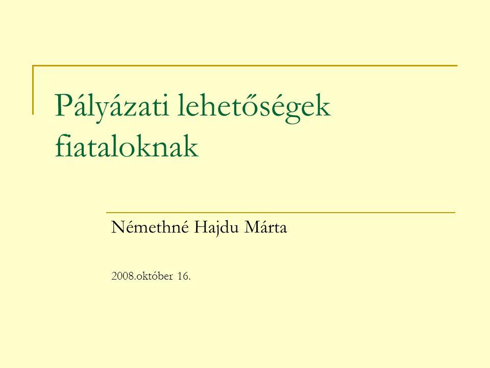 Pályázati lehetőségek fiataloknak Némethné Hajdu Márta 2008.október 16.