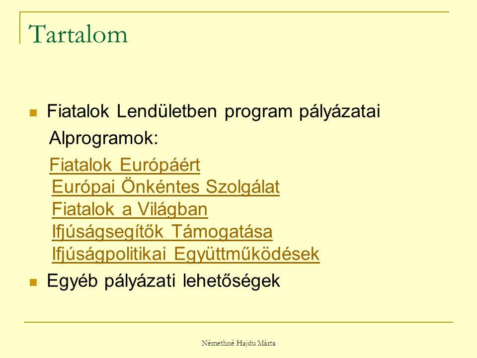 Némethné Hajdu Márta Fiatalok Lendületben program Kiíró: Európai Bizottság Időtartama: 2007-2013.