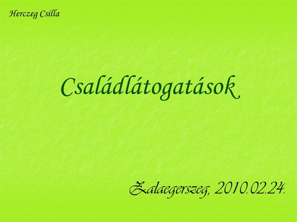 Családlátogatások Zalaegerszeg, 2010.02.24. Herczeg Csilla
