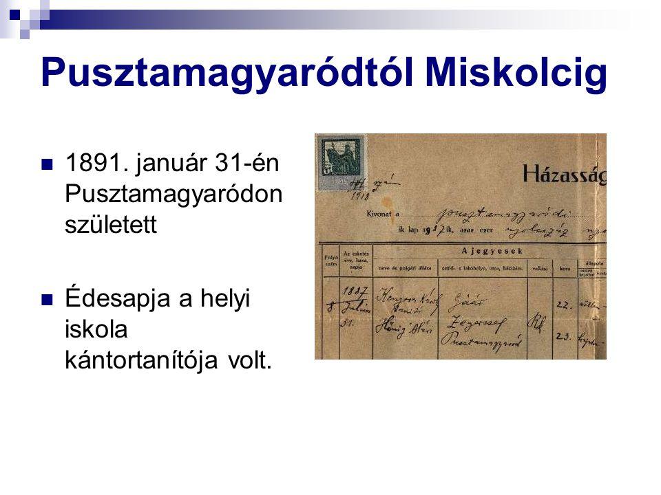 Pusztamagyaródtól Miskolcig 1891.