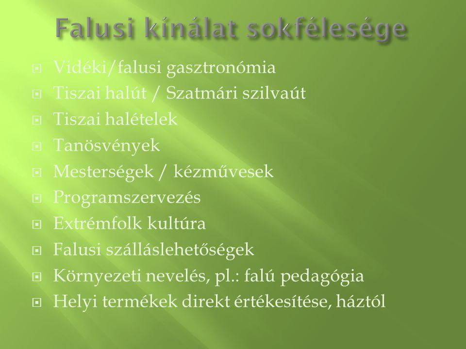  Vidéki/falusi gasztronómia  Tiszai halút / Szatmári szilvaút  Tiszai halételek  Tanösvények  Mesterségek / kézművesek  Programszervezés  Extré