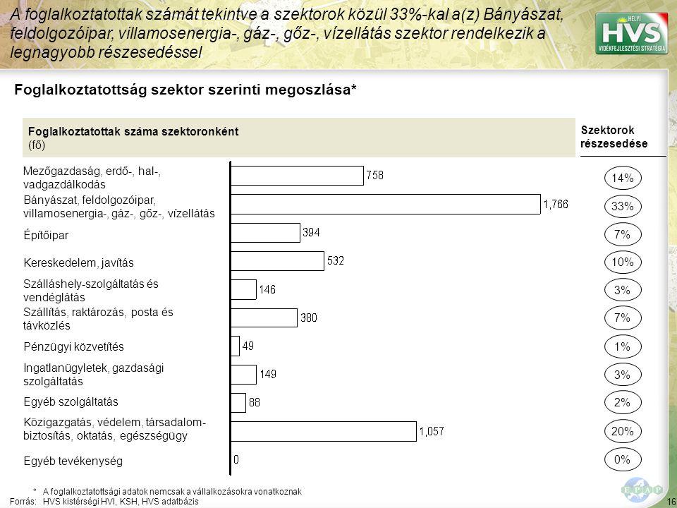 16 Foglalkoztatottság szektor szerinti megoszlása* A foglalkoztatottak számát tekintve a szektorok közül 33%-kal a(z) Bányászat, feldolgozóipar, villa