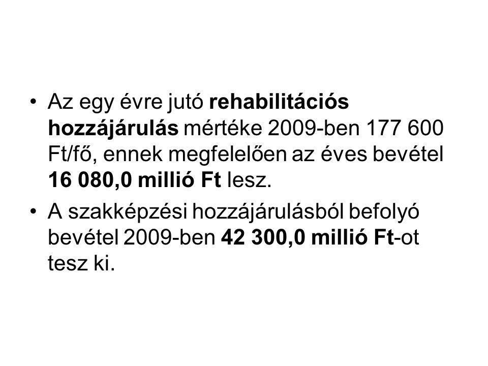Az egy évre jutó rehabilitációs hozzájárulás mértéke 2009-ben 177 600 Ft/fő, ennek megfelelően az éves bevétel 16 080,0 millió Ft lesz.