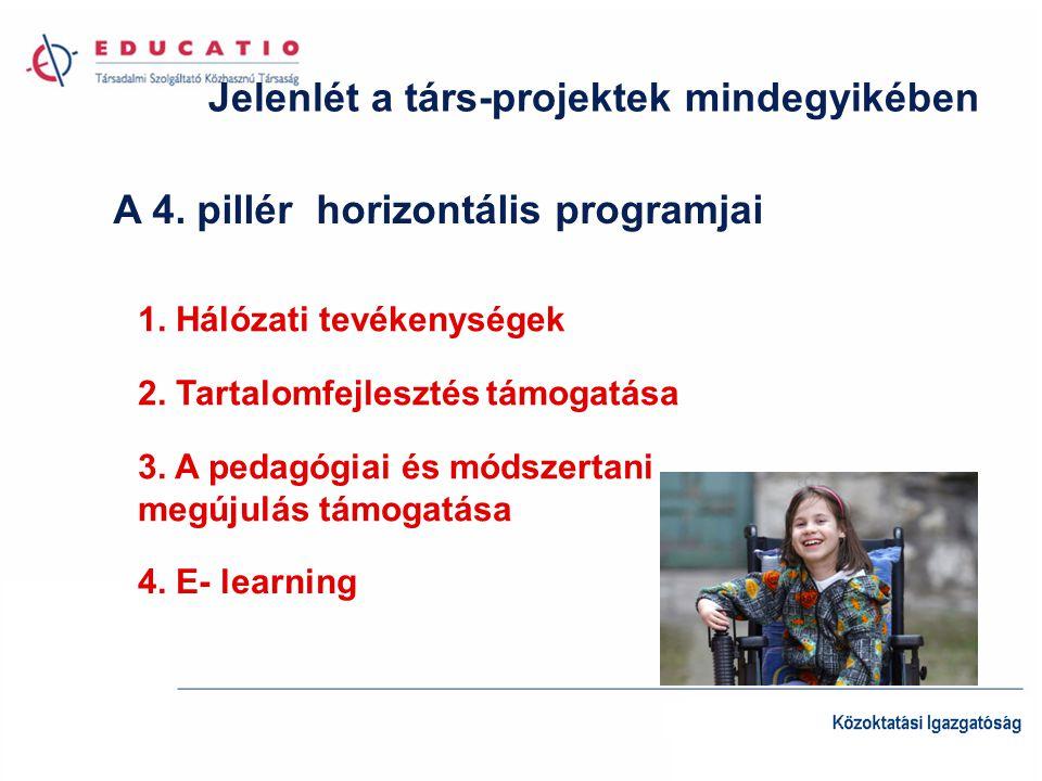 Jelenlét a társ-projektek mindegyikében A 4. pillér horizontális programjai 1.