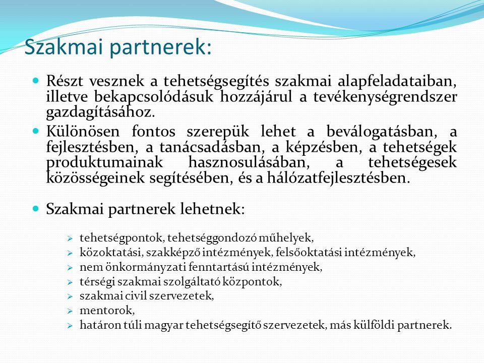 Szakmai partnerek: Részt vesznek a tehetségsegítés szakmai alapfeladataiban, illetve bekapcsolódásuk hozzájárul a tevékenységrendszer gazdagításához.