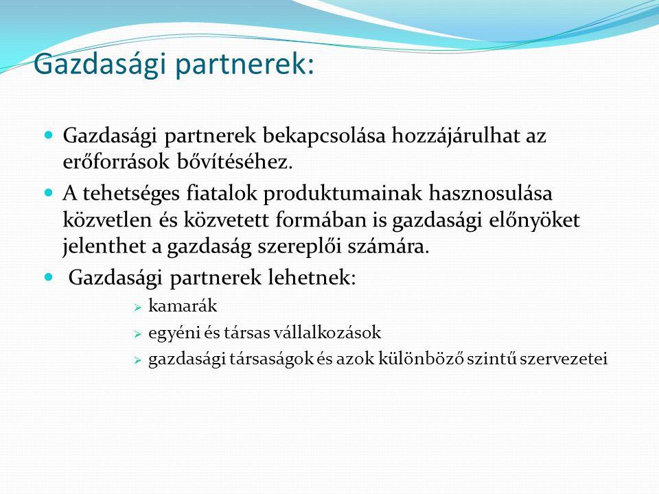 Gazdasági partnerek: Gazdasági partnerek bekapcsolása hozzájárulhat az erőforrások bővítéséhez. A tehetséges fiatalok produktumainak hasznosulása közv