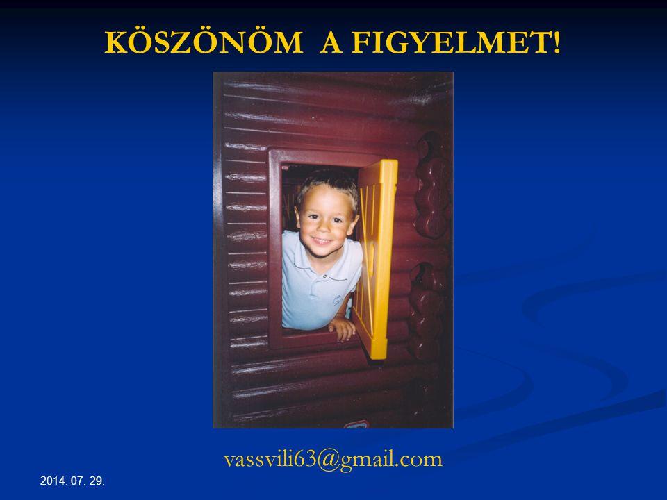 2014. 07. 29. KÖSZÖNÖM A FIGYELMET! vassvili63@gmail.com