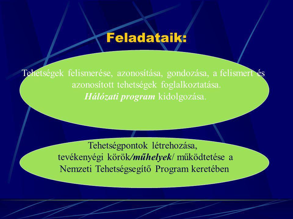 Feladataik: Tehetségek felismerése, azonosítása, gondozása, a felismert és azonosított tehetségek foglalkoztatása. Hálózati program kidolgozása. Tehet