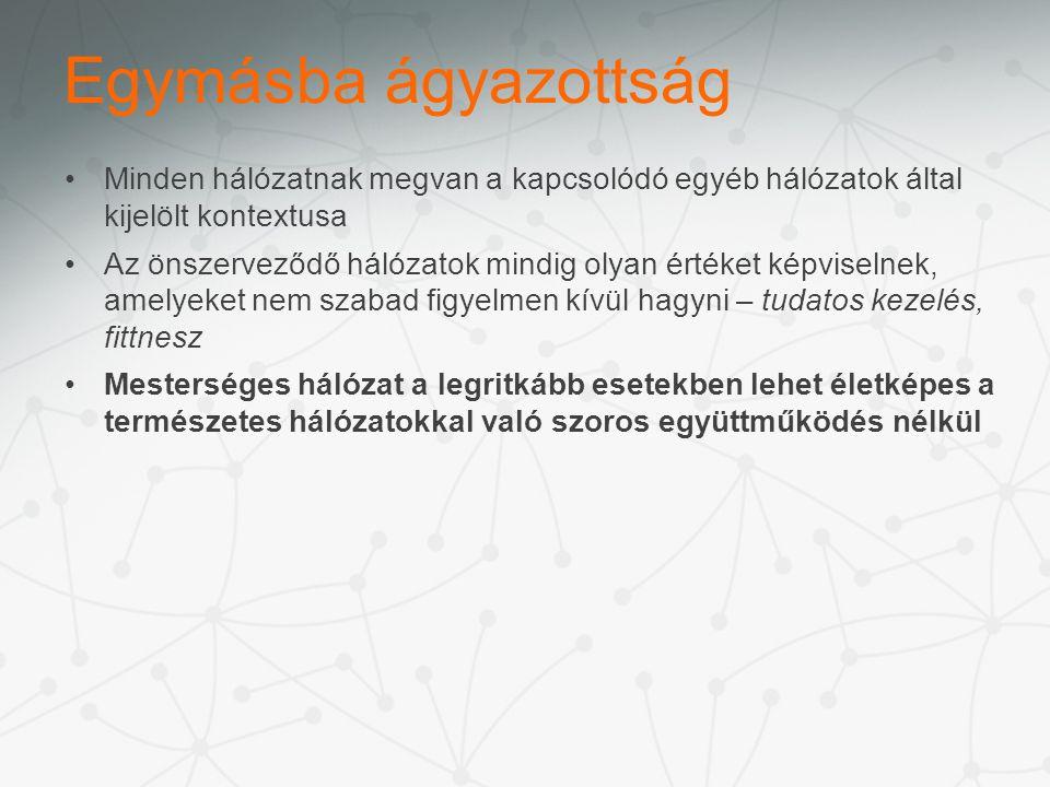 Minden hálózatnak megvan a kapcsolódó egyéb hálózatok által kijelölt kontextusa Az önszerveződő hálózatok mindig olyan értéket képviselnek, amelyeket nem szabad figyelmen kívül hagyni – tudatos kezelés, fittnesz Mesterséges hálózat a legritkább esetekben lehet életképes a természetes hálózatokkal való szoros együttműködés nélkül Egymásba ágyazottság