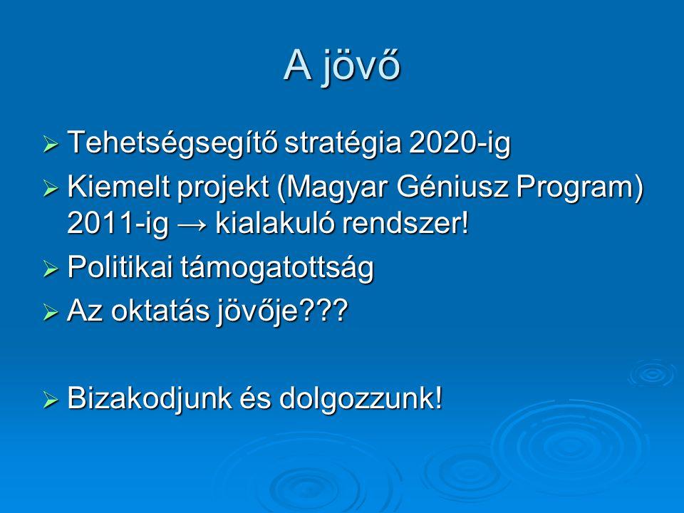 A jövő  Tehetségsegítő stratégia 2020-ig  Kiemelt projekt (Magyar Géniusz Program) 2011-ig → kialakuló rendszer.