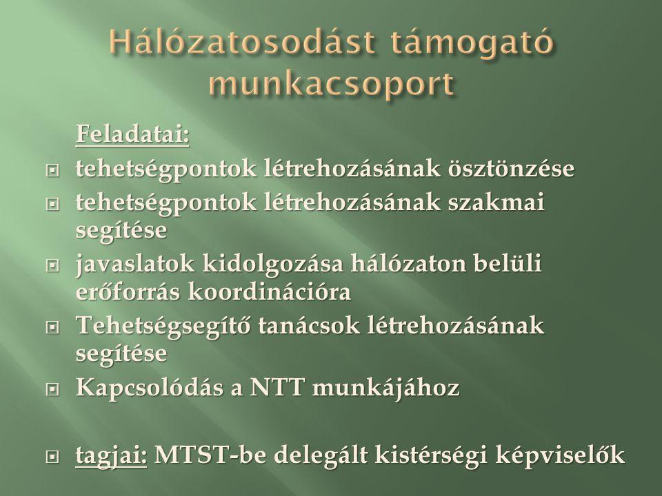 Feladatai:  tehetségpontok létrehozásának ösztönzése  tehetségpontok létrehozásának szakmai segítése  javaslatok kidolgozása hálózaton belüli erőforrás koordinációra  Tehetségsegítő tanácsok létrehozásának segítése  Kapcsolódás a NTT munkájához  tagjai: MTST-be delegált kistérségi képviselők