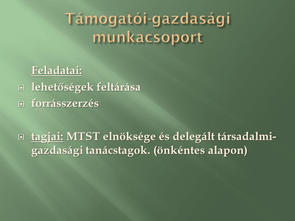 Feladatai:  lehetőségek feltárása  forrásszerzés  tagjai: MTST elnöksége és delegált társadalmi- gazdasági tanácstagok.