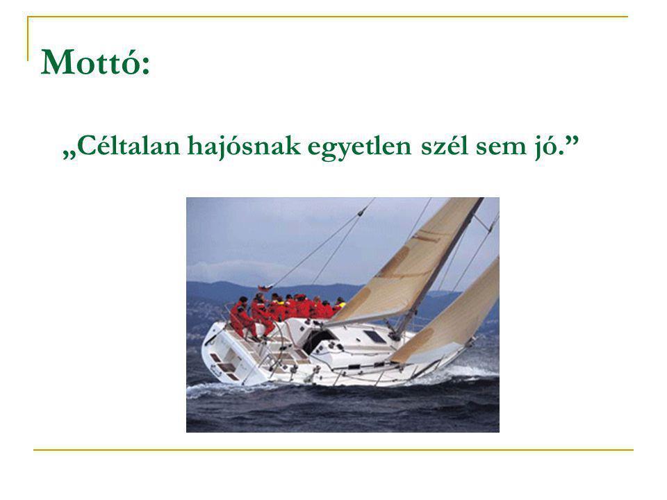 """Mottó: """"Céltalan hajósnak egyetlen szél sem jó."""