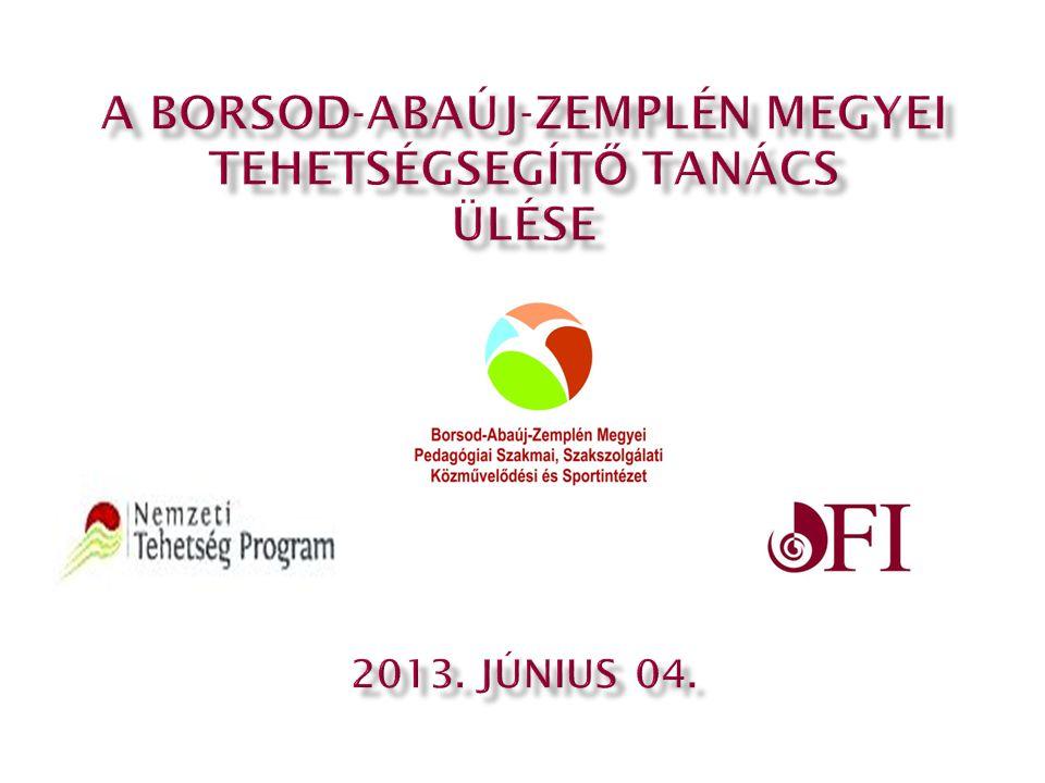  A Borsod-Abaúj-Zemplén Megyei Tehetségsegítő Tanács feladatainak hatékonyabb ellátása érdekében munkacsoportokat hoz létre.