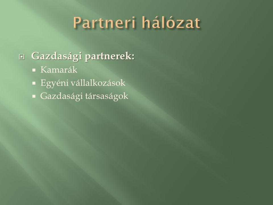  Gazdasági partnerek:  Kamarák  Egyéni vállalkozások  Gazdasági társaságok