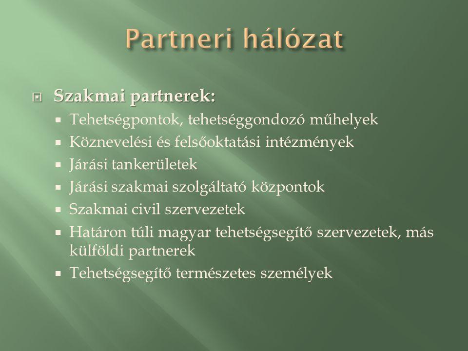  Szakmai partnerek:  Tehetségpontok, tehetséggondozó műhelyek  Köznevelési és felsőoktatási intézmények  Járási tankerületek  Járási szakmai szolgáltató központok  Szakmai civil szervezetek  Határon túli magyar tehetségsegítő szervezetek, más külföldi partnerek  Tehetségsegítő természetes személyek