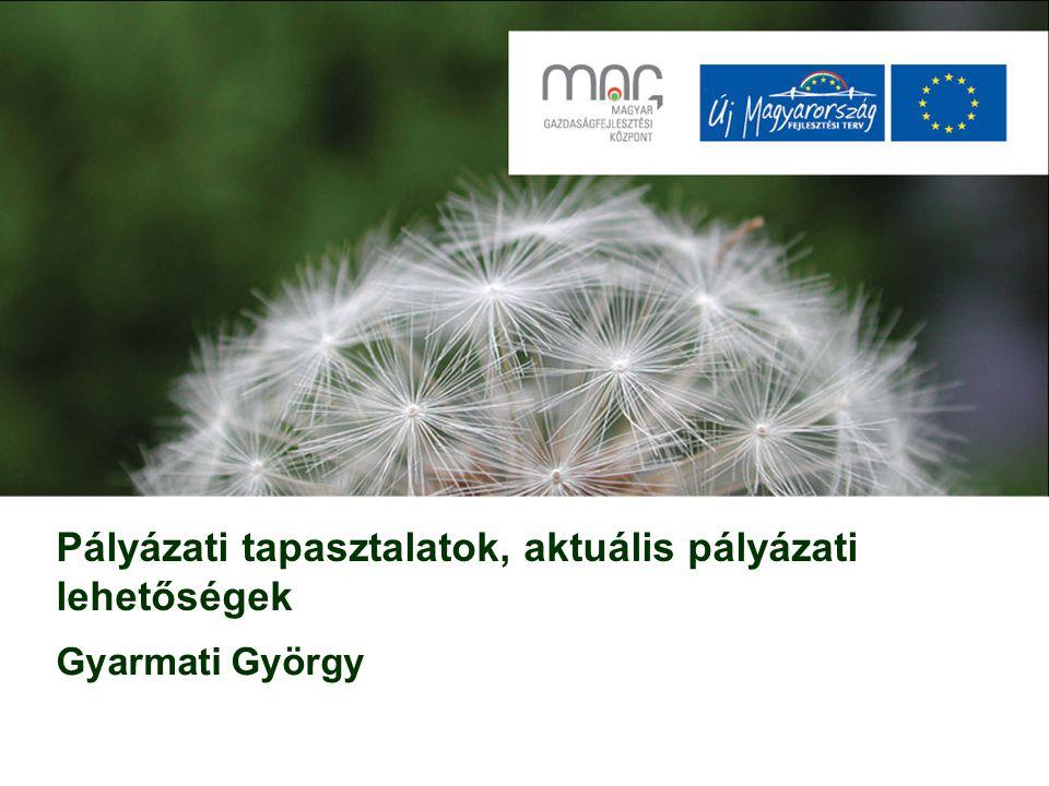 Pályázati tapasztalatok, aktuális pályázati lehetőségek Gyarmati György