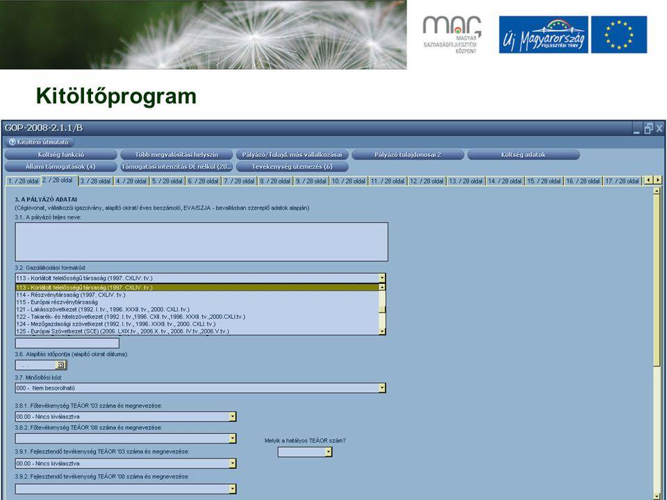 Kitöltőprogram
