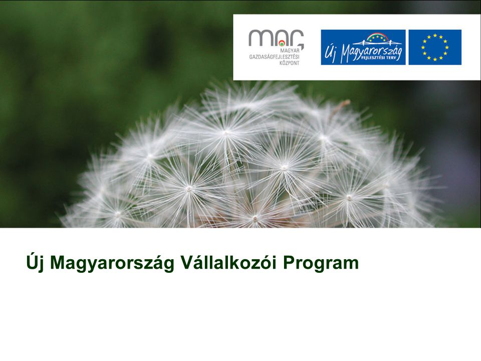 Új Magyarország Vállalkozói Program
