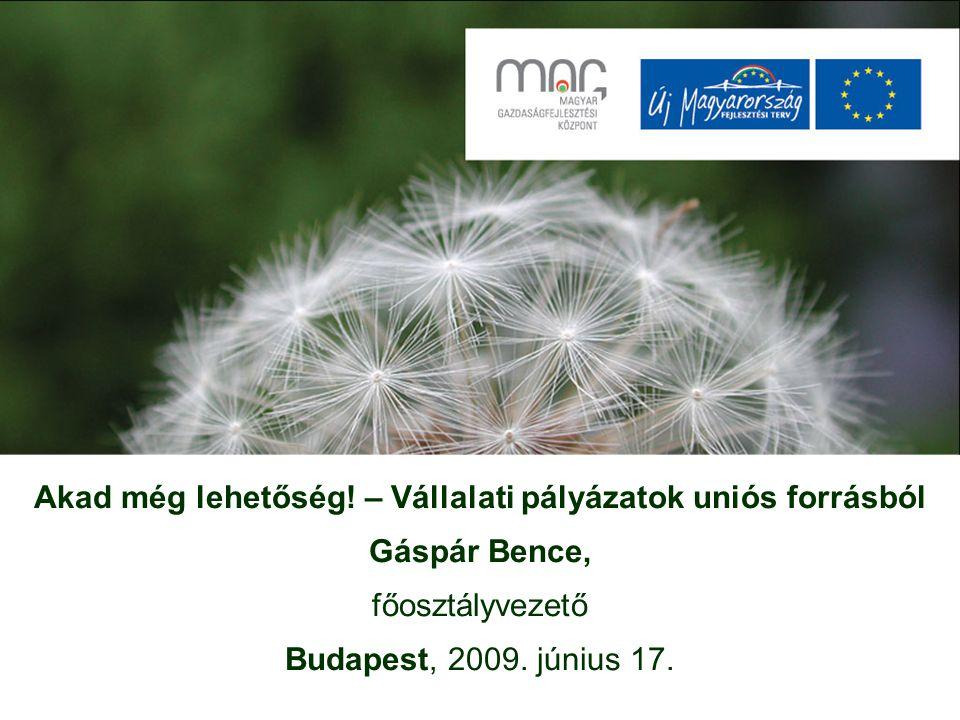 Akad még lehetőség! – Vállalati pályázatok uniós forrásból Gáspár Bence, főosztályvezető Budapest, 2009. június 17.