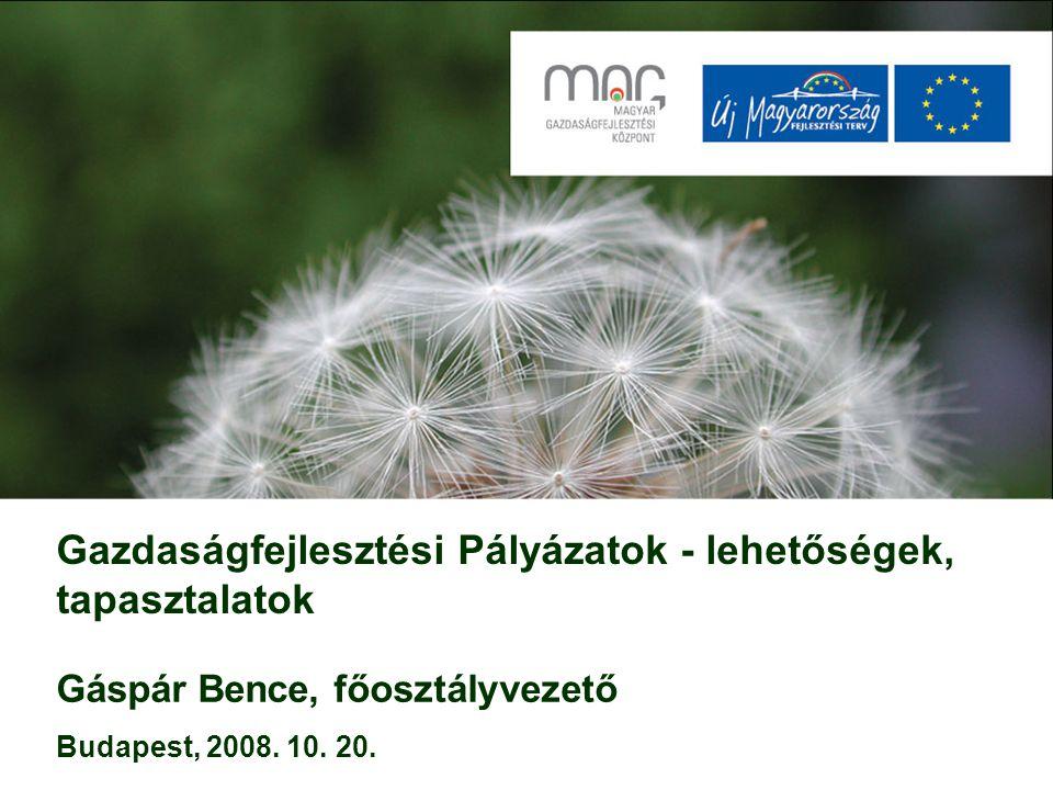Gazdaságfejlesztési Pályázatok - lehetőségek, tapasztalatok Gáspár Bence, főosztályvezető Budapest, 2008.