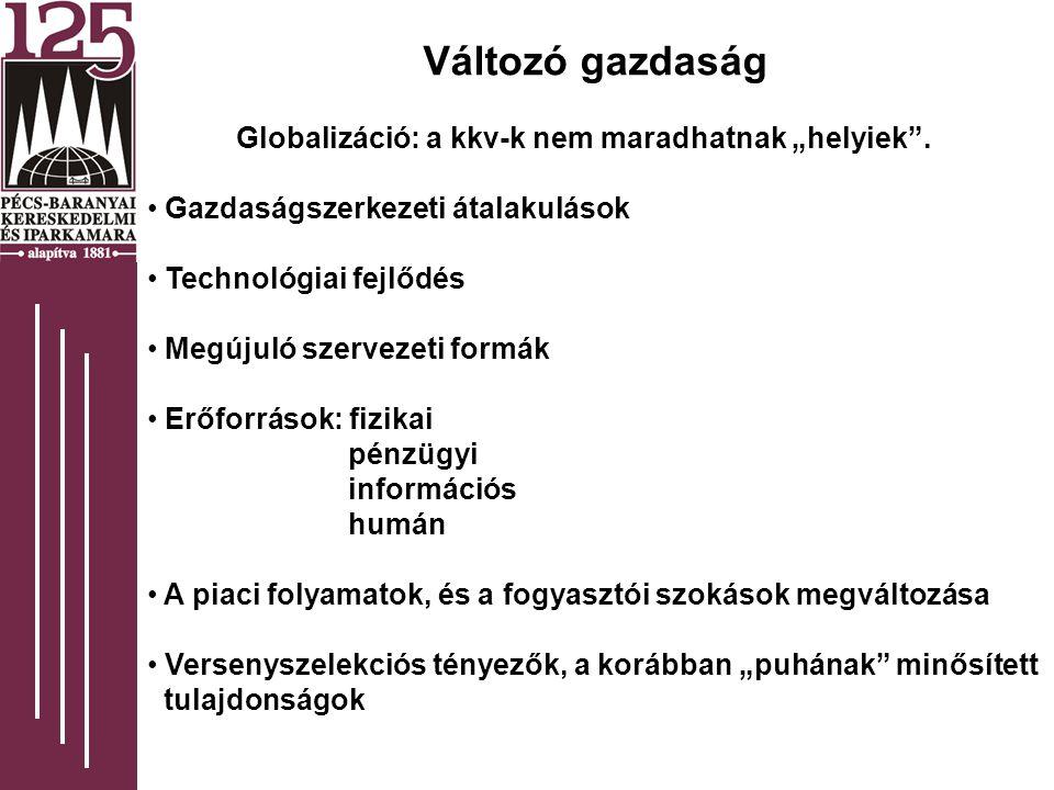 """Változó gazdaság Globalizáció: a kkv-k nem maradhatnak """"helyiek ."""