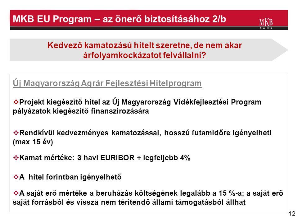 12 MKB EU Program – az önerő biztosításához 2/b Új Magyarország Agrár Fejlesztési Hitelprogram  Projekt kiegészítő hitel az Új Magyarország Vidékfejlesztési Program pályázatok kiegészítő finanszírozására  A hitel forintban igényelhető  Rendkívül kedvezményes kamatozással, hosszú futamidőre igényelheti (max 15 év)  Kamat mértéke: 3 havi EURIBOR + legfeljebb 4%  A saját erő mértéke a beruházás költségének legalább a 15 %-a; a saját erő saját forrásból és vissza nem térítendő állami támogatásból állhat Kedvező kamatozású hitelt szeretne, de nem akar árfolyamkockázatot felvállalni?