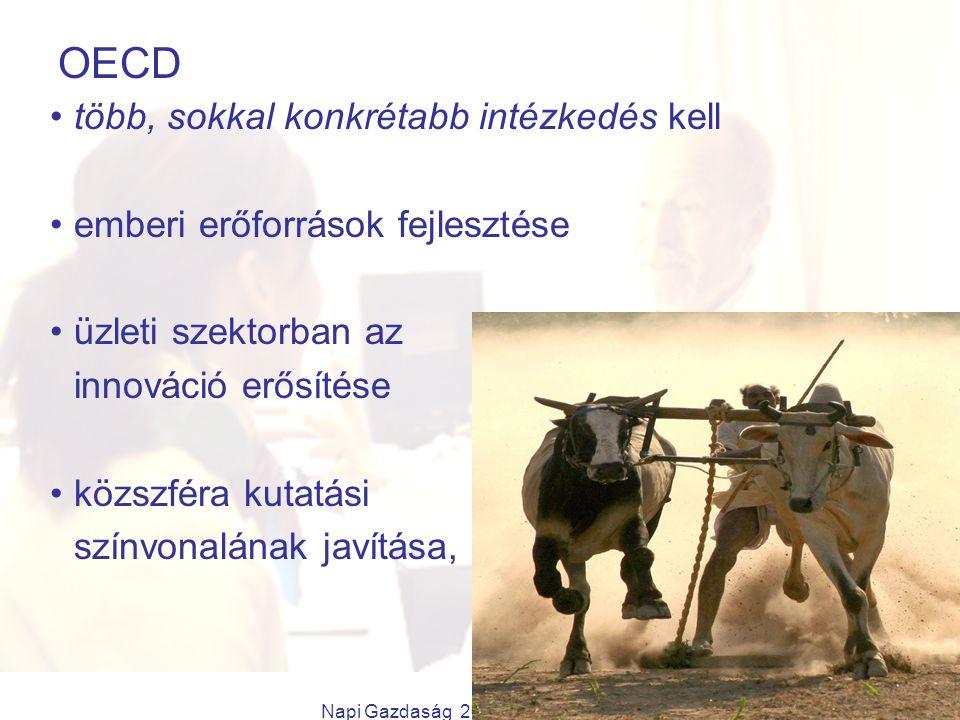 Napi Gazdaság 2009.11.26. OECD több, sokkal konkrétabb intézkedés kell emberi erőforrások fejlesztése üzleti szektorban az innováció erősítése közszfé
