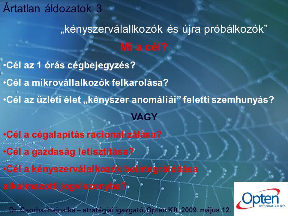 Vétkes ártatlanok, avagy a magyar céghálózat csapdájában Csorbai Hajnalka – stratégiai igazgató Opten Informatikai Kft.