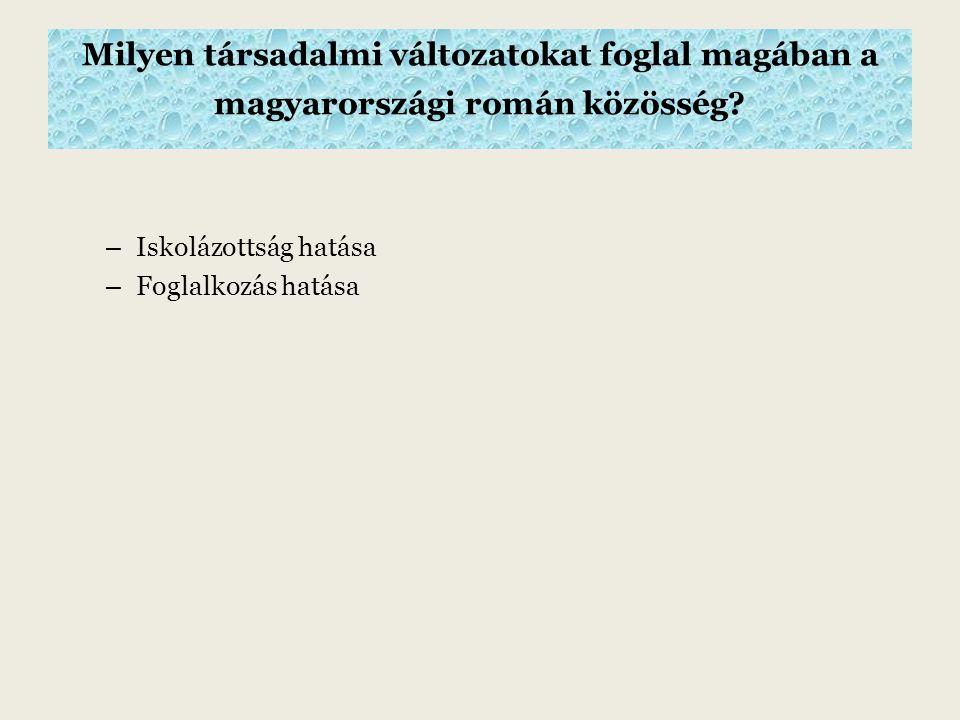 Milyen társadalmi változatokat foglal magában a magyarországi román közösség.