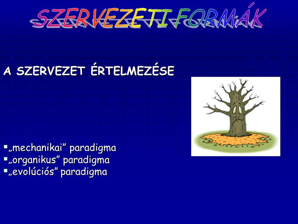 Mintzberg-féle szervezet – tipológia 4.