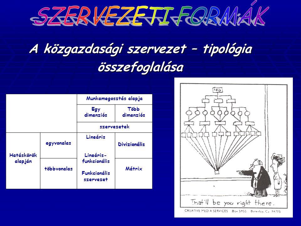 A közgazdasági szervezet – tipológia összefoglalása Munkamegosztás alapja Egy dimenziós Több dimenziós szervezetek Hatáskörök alapján egyvonalas Lineá