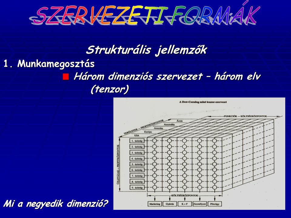 Strukturális jellemzők 1. Munkamegosztás Három dimenziós szervezet – három elv (tenzor) Mi a negyedik dimenzió?