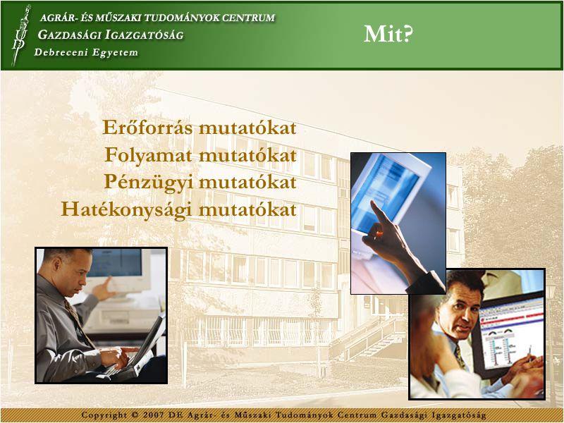 Mit? Erőforrás mutatókat Folyamat mutatókat Pénzügyi mutatókat Hatékonysági mutatókat