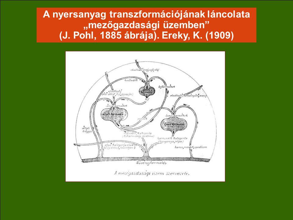 """A nyersanyag transzformációjának láncolata """"mezőgazdasági üzemben (J."""